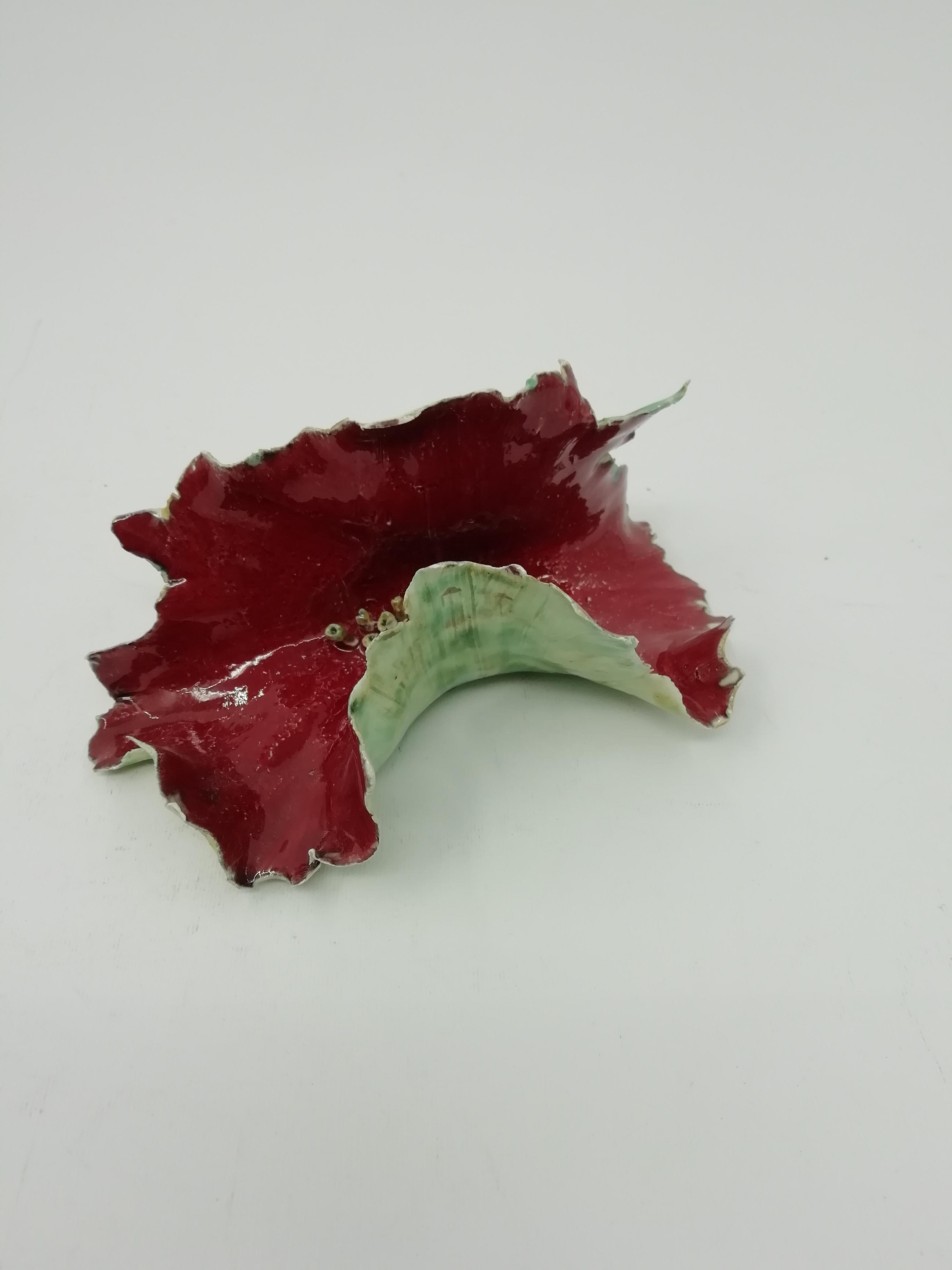 Foglia Rosso Scuro Alga
